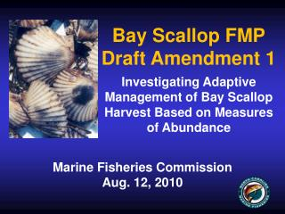 Bay Scallop FMP Draft Amendment 1