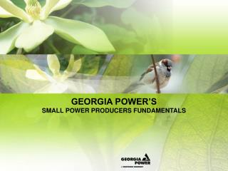 GEORGIA POWER S  SMALL POWER PRODUCERS FUNDAMENTALS