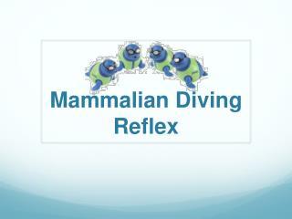 Mammalian Diving Reflex