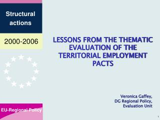 LESSONS FROM THE THEMATIC  EVALUATION OF THE TERRITORIAL EMPLOYMENT PACTS
