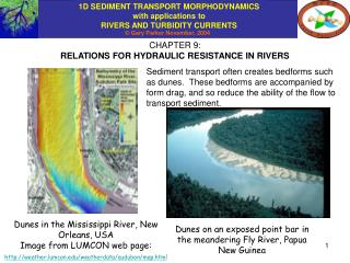 CHAPTER 9: RELATIONS FOR HYDRAULIC RESISTANCE IN RIVERS