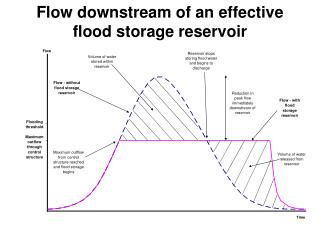 Flow downstream of an effective flood storage reservoir