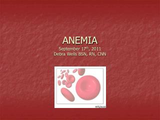 ANEMIA September 17 th , 2011 Debra Wells BSN, RN, CNN