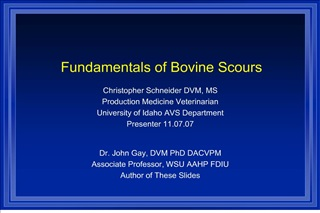 Fundamentals of Bovine Scours