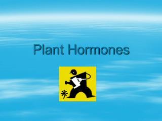 Plant Hormones