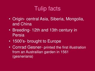 Tulip facts