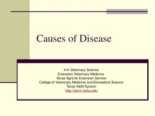 Causes of Disease