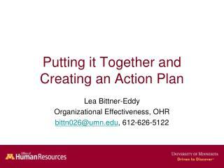 Putting it Together and Creating an Action Plan