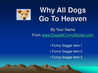 Why All Dogs  Go To Heaven