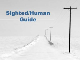 Sighted/Human Guide