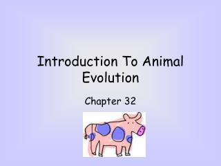Introduction To Animal Evolution
