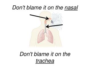 Don't blame it on the  nasal Don't blame it on the  trachea