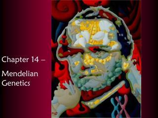 Chapter 14 –  Mendelian Genetics