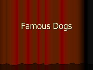 Famous Dogs