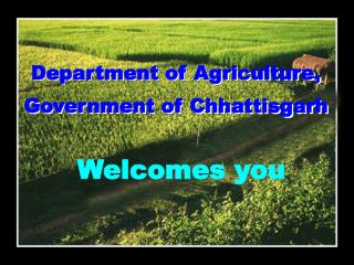Department of Agriculture, Government of Chhattisgarh
