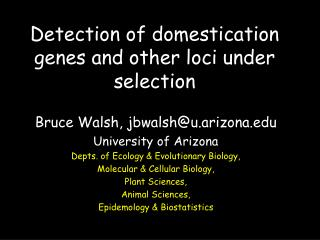 Detection of domestication genes and other loci under selection