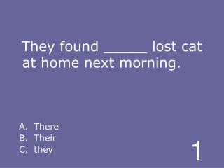 They found _____ lost cat at home next morning.