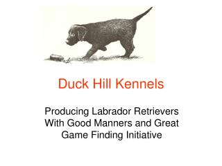 Duck Hill Kennels