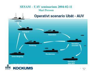SESAM – UAV seminarium 2004-02-11 Mari Persson