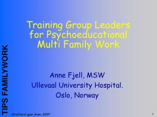 Training Group Leaders for Psychoeducational Multi Family Work