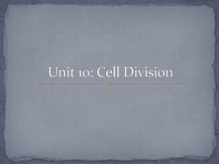 Unit 10:  C ell Division