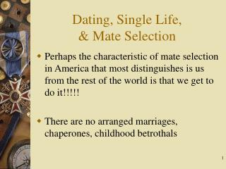 Dating, Single Life,  & Mate Selection