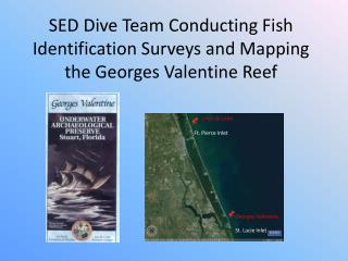 SED Dive Team Conducting Fish Identification Surveys and Mapping the Georges Valentine Reef