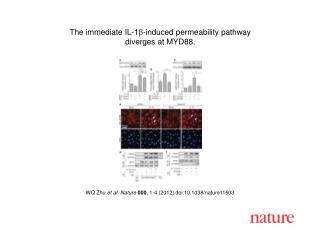 WQ Zhu  et al. Nature 000 ,  1-4  (2012) doi:10.1038/nature11603