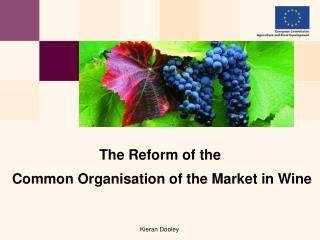 The Reform of the  Common Organisation of the Market in Wine