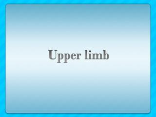 U pper limb