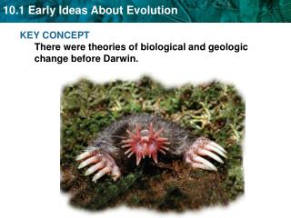 KEY CONCEPT  There were theories of biological and geologic change before Darwin.