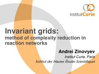 Invariant grids: method of complexity reduction in reaction networks