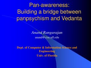 Pan-awareness:  Building a bridge between panpsychism and Vedanta