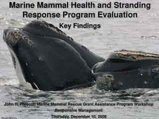 Marine Mammal Health and Stranding Response Program Evaluation Key Findings