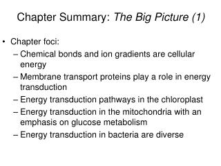 Chapter foci: Chemical bonds and ion gradients are cellular energy