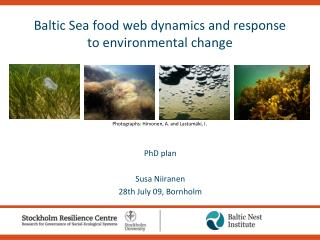 Baltic Sea food web dynamics and response to environmental change