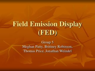 Field Emission Display (FED)