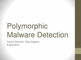 Polymorphic Malware Detection
