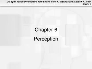 Chapter 6 Perception