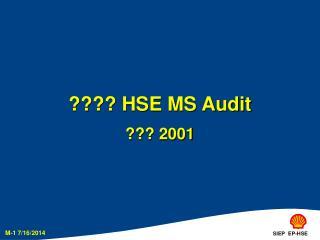 ???? HSE MS Audit ??? 2001
