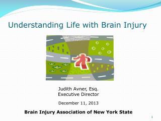 Understanding Life with Brain Injury