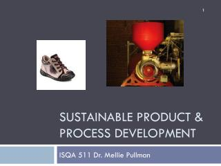 Sustainable Product & process development