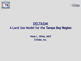 DELTASIM A Land Use Model for the Tampa Bay Region