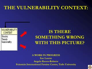 THE VULNERABILITY CONTEXT: