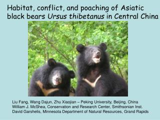Habitat, conflict, and poaching of Asiatic  black bears  Ursus thibetanus  in Central China