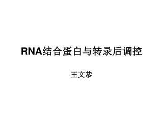 RNA 结合蛋白与转录后调控