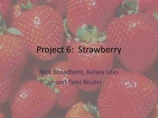 Project 6:  Strawberry