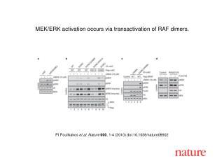 PI Poulikakos  et al. Nature 000 , 1-4 (2010) doi:10.1038/nature08902