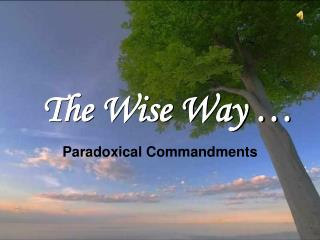 The  W ise  W ay …
