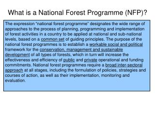 What is a National Forest Programme (NFP)?